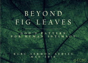 Read more about the article God's Perspective On Same-Sex Relationships | BEYOND FIG LEAVES